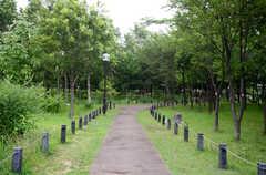 シェアハウス近くにある公園の遊歩道。(2013-07-05,共用部,ENVIRONMENT,1F)