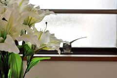 靴箱の上に彩られたお花。(2010-03-29,共用部,OTHER,1F)
