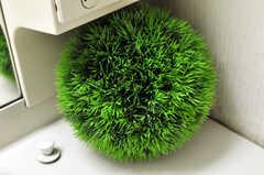 鮮やかな緑です。(2010-03-29,共用部,OTHER,1F)