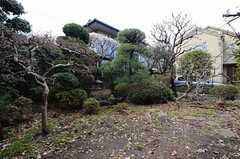 庭の様子。(2015-03-04,共用部,OTHER,1F)