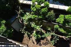 ベランダから見た庭の様子。(2016-05-12,共用部,OTHER,2F)