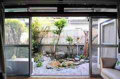 庭の様子。(2012-05-21,共用部,LIVINGROOM,1F)