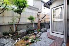 庭の様子2。(2012-05-21,共用部,OTHER,1F)