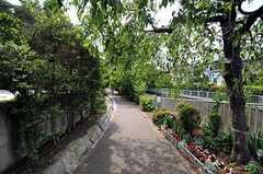 神田川沿いの緑道の様子。(2012-05-21,共用部,ENVIRONMENT,1F)