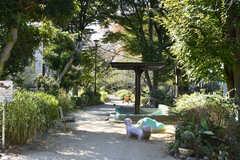 シェアハウスの近くにある緑道。いい散歩道です。(2020-11-04,共用部,ENVIRONMENT,1F)