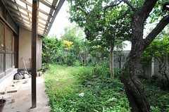 庭の様子。(2013-10-01,共用部,OTHER,1F)