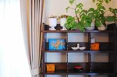 飾り棚にはグリーンも。(2010-04-23,共用部,LIVINGROOM,1F)
