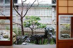 居間側から見た庭の様子。(2015-02-25,共用部,LIVINGROOM,1F)