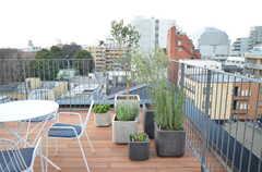 植物はガーデンデザインを手掛けるSOW atelierさんによるもの。(2016-03-02,共用部,OTHER,6F)