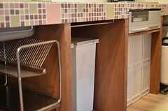 ゴミ箱はシンク下に。(2012-03-16,共用部,KITCHEN,1F)