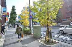 東京メトロ丸ノ内線・新高円寺駅前の様子。(2015-11-05,共用部,ENVIRONMENT,1F)