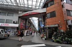 各線・高円寺駅からシェアハウスへ向かう道の様子。(2011-06-14,共用部,ENVIRONMENT,1F)