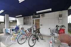 自転車置場の様子。(2013-06-18,専有部,ROOM,1F)