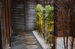 飛び石と植栽。ベニシャラの木も植えられています。(2015-02-05,周辺環境,ENTRANCE,1F)
