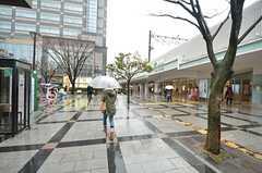 各線・錦糸町駅の様子。(2015-03-09,共用部,ENVIRONMENT,1F)