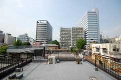 屋上の様子。(2008-08-04,共用部,OTHER,4F)