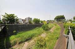 近くの残堀川。水が流れていることは少ないそう。(2014-05-13,共用部,ENVIRONMENT,1F)