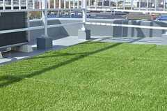 人工芝が敷かれています。周りにはプランターを設置するそう。(2013-04-08,共用部,OTHER,5F)