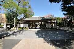 JR南武線・西国立駅の目の前にあるお寺。枝垂れ桜がとても綺麗です。(2013-04-08,共用部,ENVIRONMENT,1F)