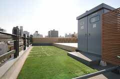 屋上の様子。芝とウッドデッキが敷かれています。(2013-11-06,共用部,OTHER,5F)