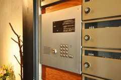 オートロックで個別インターホン付き。(2010-02-18,周辺環境,ENTRANCE,1F)