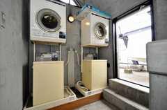 洗濯機、乾燥機の様子。(2010-02-18,共用部,LAUNDRY,6F)