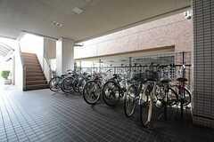 自転車置き場の様子。(2014-08-27,共用部,GARAGE,1F)