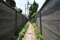 通りからは小道を歩きます。(2011-07-13,共用部,ENVIRONMENT,1F)