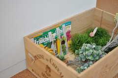 廊下に置かれた木箱の様子。植物の種などが並びます。(2013-08-12,共用部,OTHER,1F)