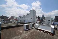 屋上の様子。(2011-07-12,共用部,OTHER,2F)