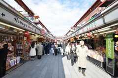 浅草寺へ向かう仲見世の様子。(2010-02-03,共用部,ENVIRONMENT,1F)