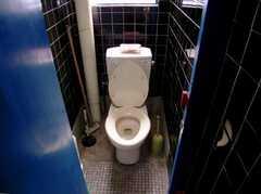 トイレの様子2。(2006-09-27,共用部,TOILET,3F)