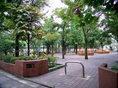 シェアハウスのすぐ裏手にある公園(2006-09-27,共用部,ENVIRONMENT,1F)