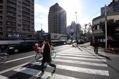 東京メトロ日比谷線・入谷駅前の様子。(2011-01-11,共用部,ENVIRONMENT,1F)