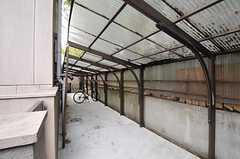 駐輪場の様子。(2012-04-18,共用部,GARAGE,1F)