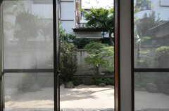 専有部から見た庭の様子。(101号室)(2011-09-16,専有部,ROOM,1F)