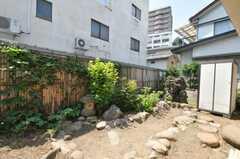 庭の様子。(2009-08-17,共用部,LIVINGROOM,1F)