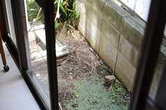 窓の外は小さな庭です。(2013-07-23,共用部,OTHER,1F)