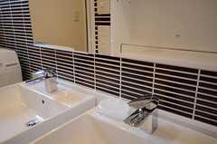 洗面台の鏡のウラは、洗面用具など収納できる棚になっています。(2013-02-14,共用部,OTHER,1F)