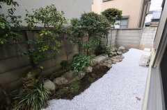 窓の目の前は庭です。(105号室)(2012-02-22,専有部,ROOM,1F)