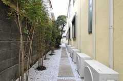 庭の様子。駐輪スペースを兼ねています。(2012-02-22,共用部,GARAGE,1F)