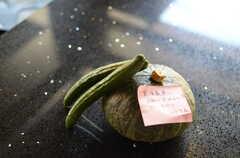 入居者さんの差し入れの野菜。(2012-08-01,共用部,OTHER,1F)