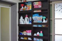 洗剤などの掃除用品もラックに収まっています。(2016-07-19,共用部,OTHER,1F)