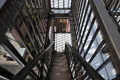 非常階段の様子。細い。(2012-02-28,共用部,OTHER,4F)