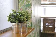 窓際のグリーン。手入れ不要の造花です。(2013-08-30,共用部,LIVINGROOM,1F)