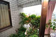 庭園の様子。(2009-05-19,共用部,OTHER,9F)