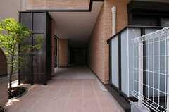 自転車置場の様子。  (2011-07-05,共用部,GARAGE,1F)